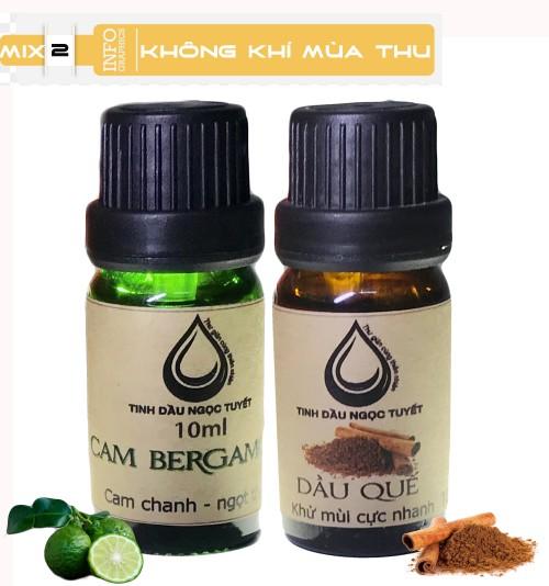 Bộ tinh dầu giúp tạo không khí vui tươi, trong lành, gần gửi của mùa thu 10mlx2 (cambegamot, quế) Ngọc Tuyết